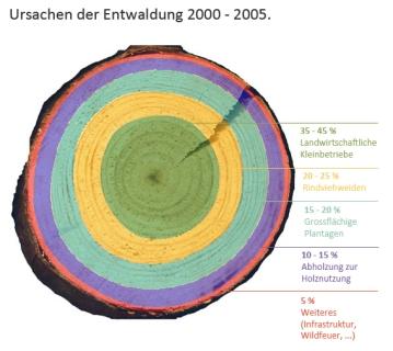 UrsachenEntwaldung